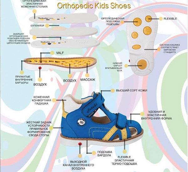 Гигиенические и профилактические требования к ортопедической обуви для детей
